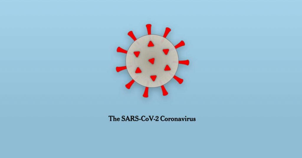 How Coronavirus Hijacks Your Cells